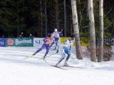 Zlatá lyže